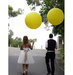 bride-groom-two-big-yellow-balloons