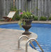 swimming-pool-plants-chairs-patio