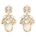 ann-taylor-crystal-earrings