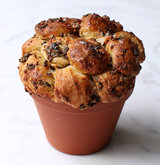 garlic-olive-flowerpot-monkey-bread