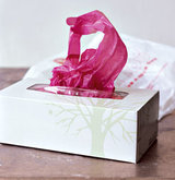 tissue-box-filled-grocery-bags