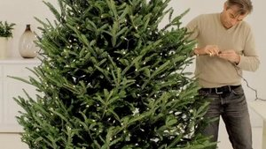 How to Put Lights on a Christmas Tree